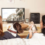 Coronavirus home confinement advice for pet owners